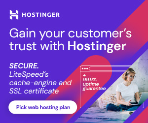 This image shows the features of hostinger